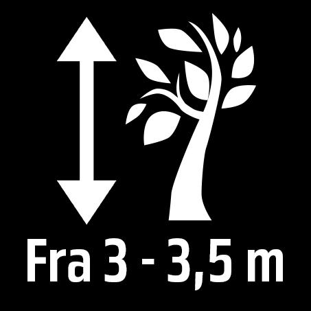 Piktogrammer for beskrivelse av planten