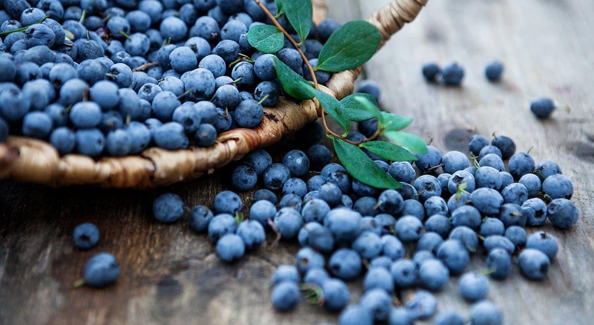 Blåbær i kurv på trebord