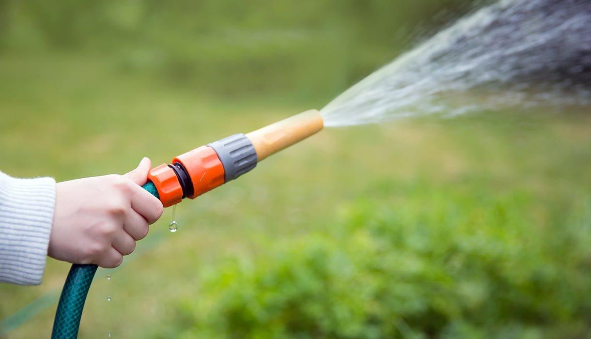 vanning av gressplen med hageslange