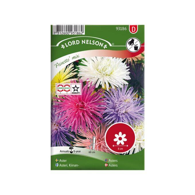 Nelson Garden frøpakke - Asters, Enkeltblomstrende, blandede farger