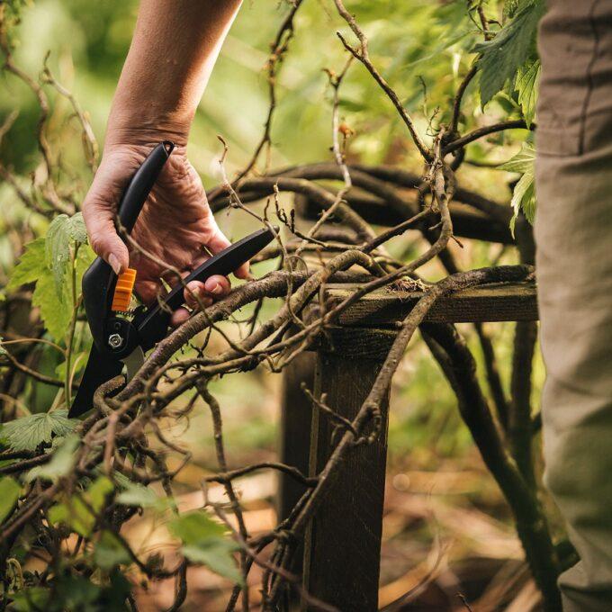 Singlestep beskjæringssaks fra Fiskars klipper en gren