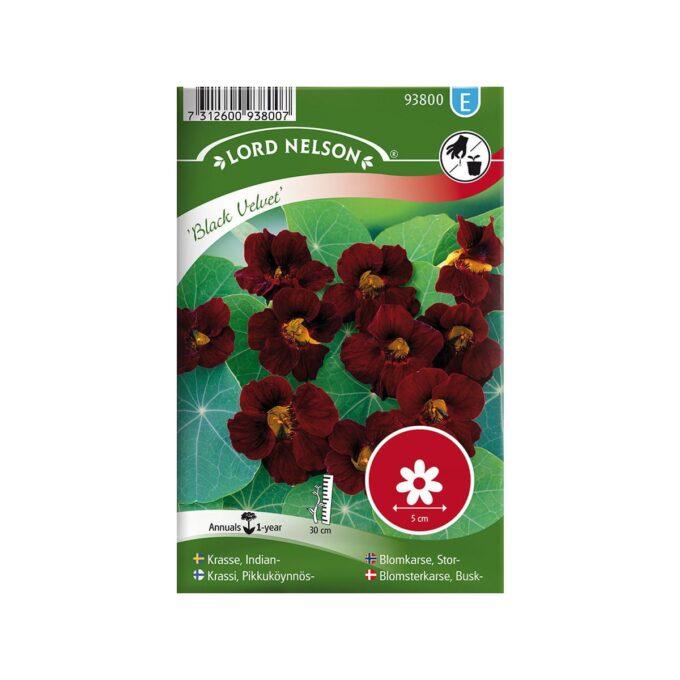 Nelson Garden frøpakke - Blomkarse, Stor, Black Velvet