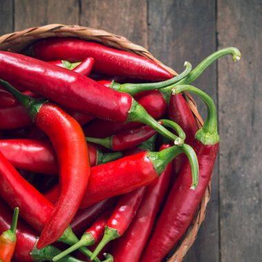 Skål med røde chili på trebord