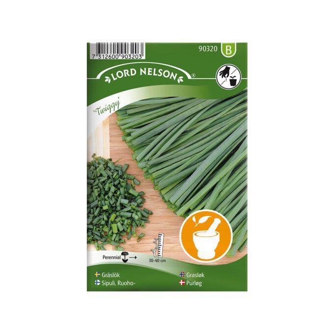 Alminnelig grasløk Twiggy - frø fra Nelson Garden