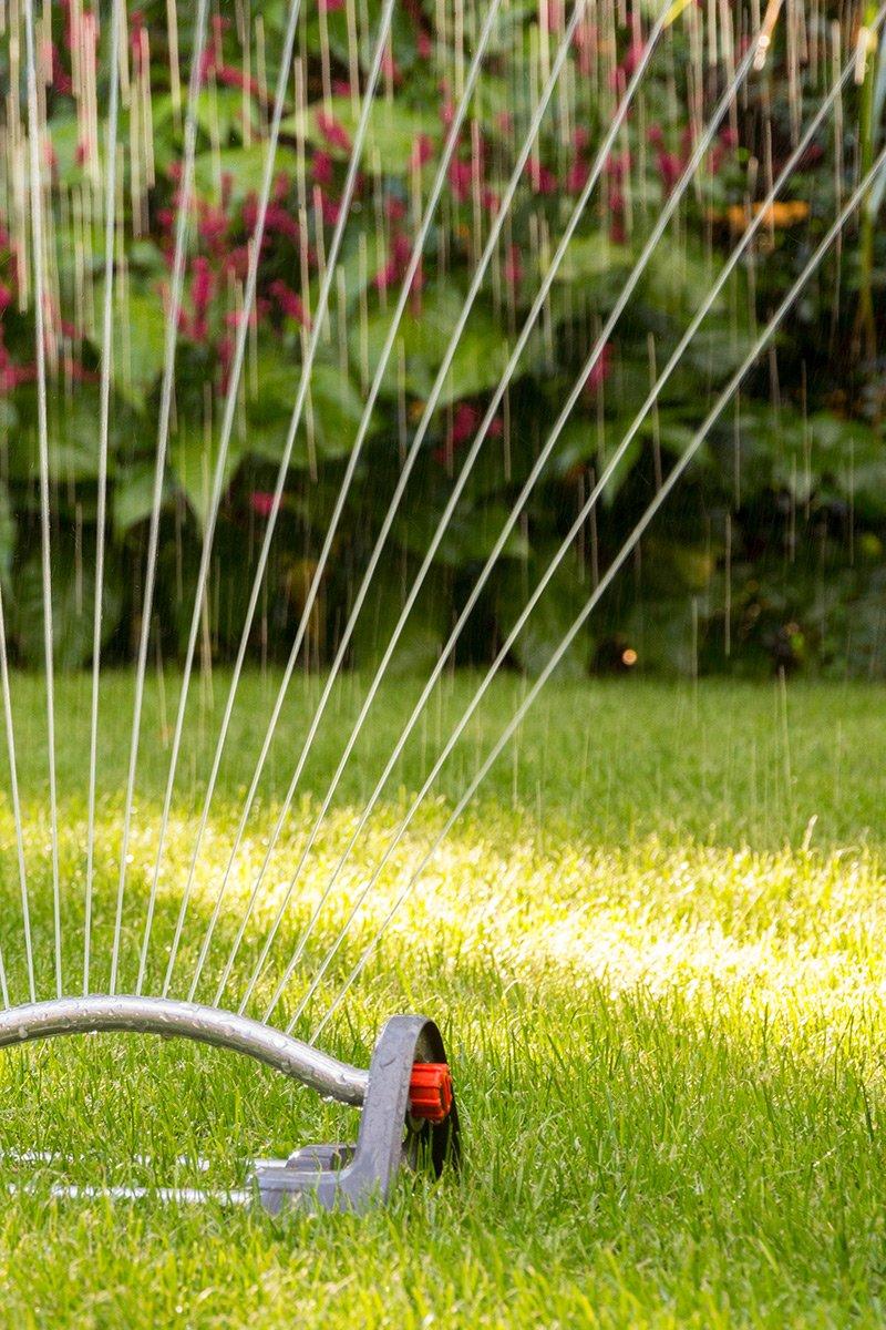 gressplen spreder vanning