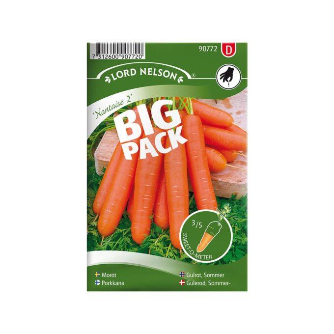 Bigpack med sommergulrot Nantaise 2 - frø fra Nelson Garden