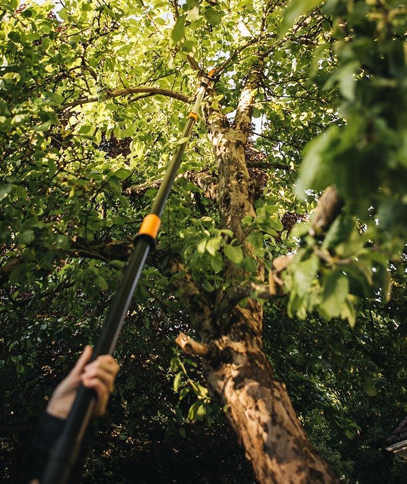 Fiskars multikutter med teleskopstang kutter i høye trær