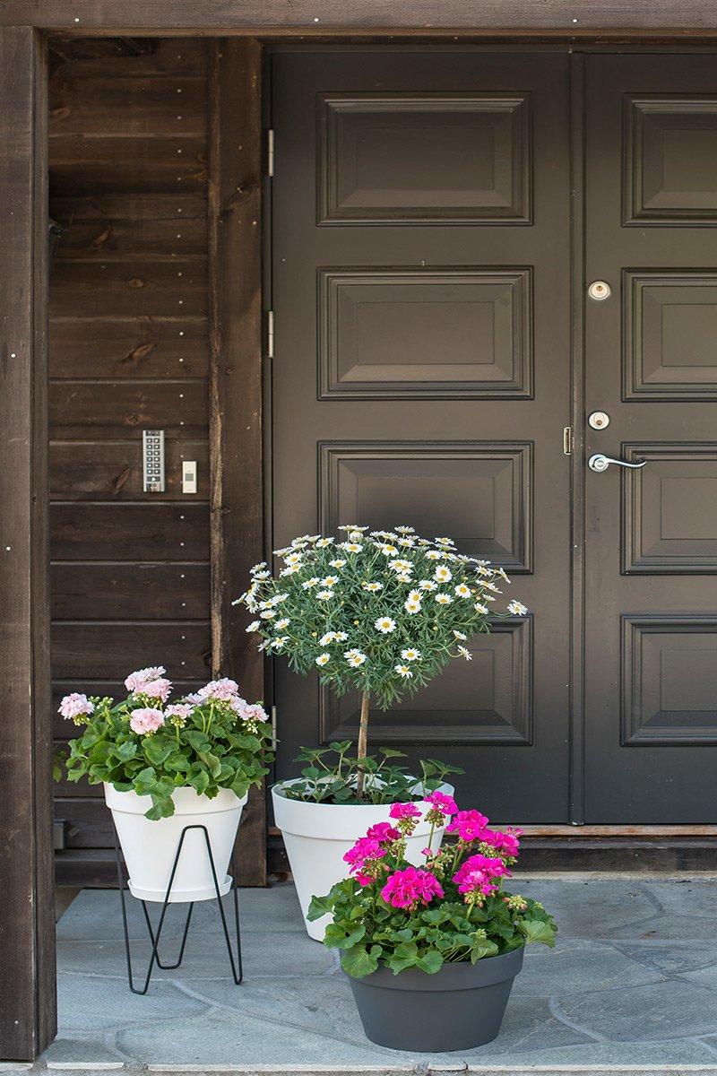 inngangsparti med blomster