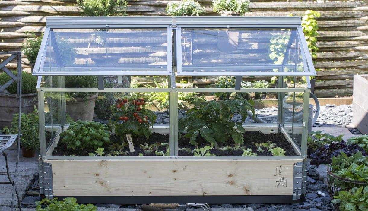 Minidrivhus satt over pallekarm med tomatplanter, krydder og salat