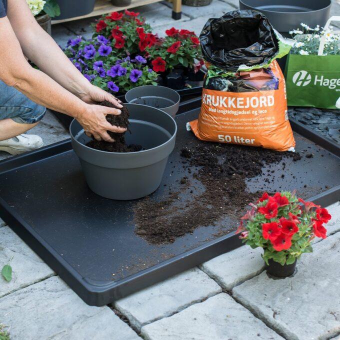 plastunderlag for pallekarm brukes til å fange opp søl fra planting