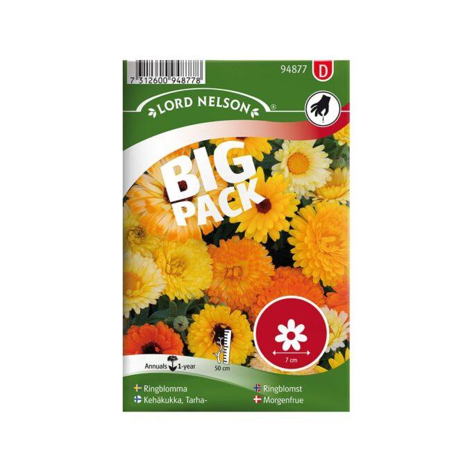 Big pack med ringblomst i blandede farger - frø fra Nelson Garden