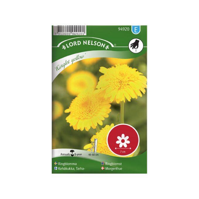 Ringblomst Kinglet Yellow - frø fra Nelson Garden