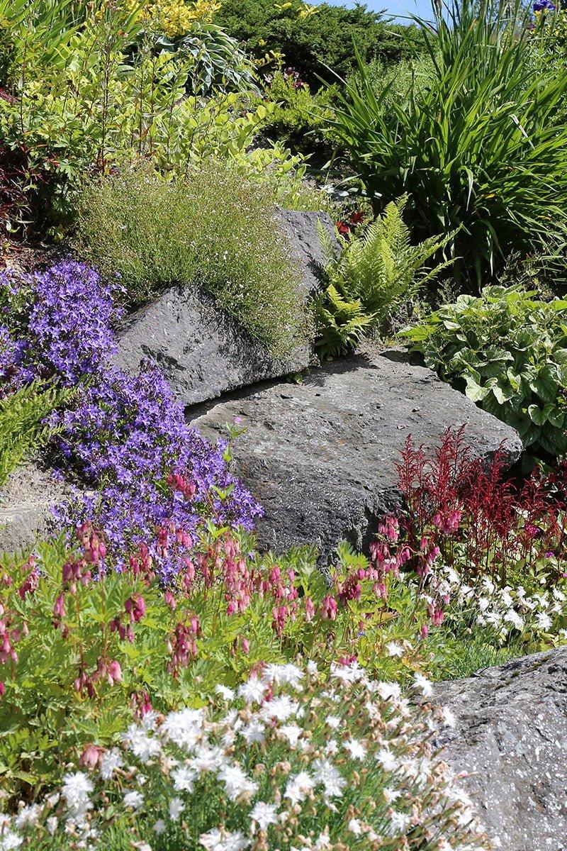 Et vellykket staudebed i solfylt hage