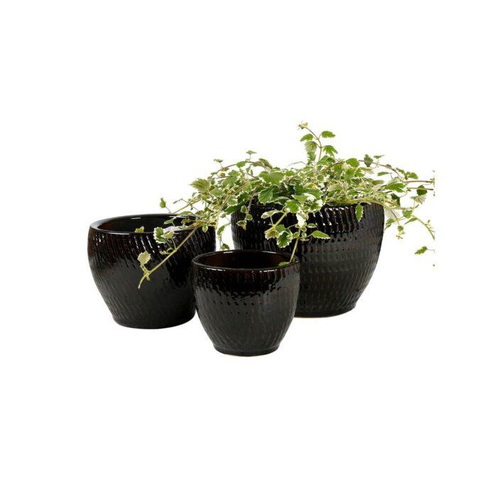 sorte Atlanta utepotter med planter
