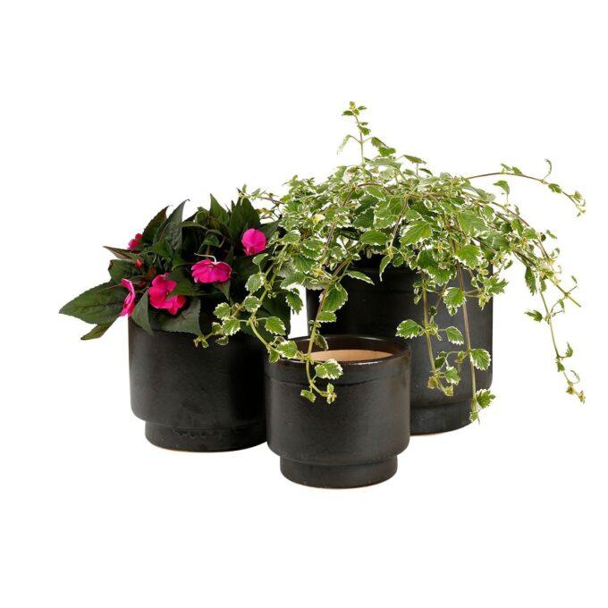 Galantgrå calisto utepotter med planter