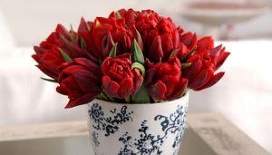 Et krus med rød tulipanbukett