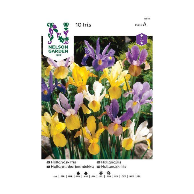 Nelson Garden blomsterløk - iris i blandede farger
