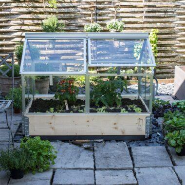 Gaia drivhus på uteplassen, med grønnsaker og urter inni