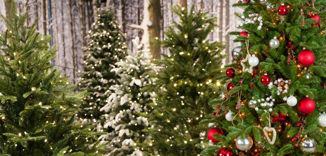 Smarte ressurser Ønsk julen velkommen med kunstig juletre - Hageland BS-35