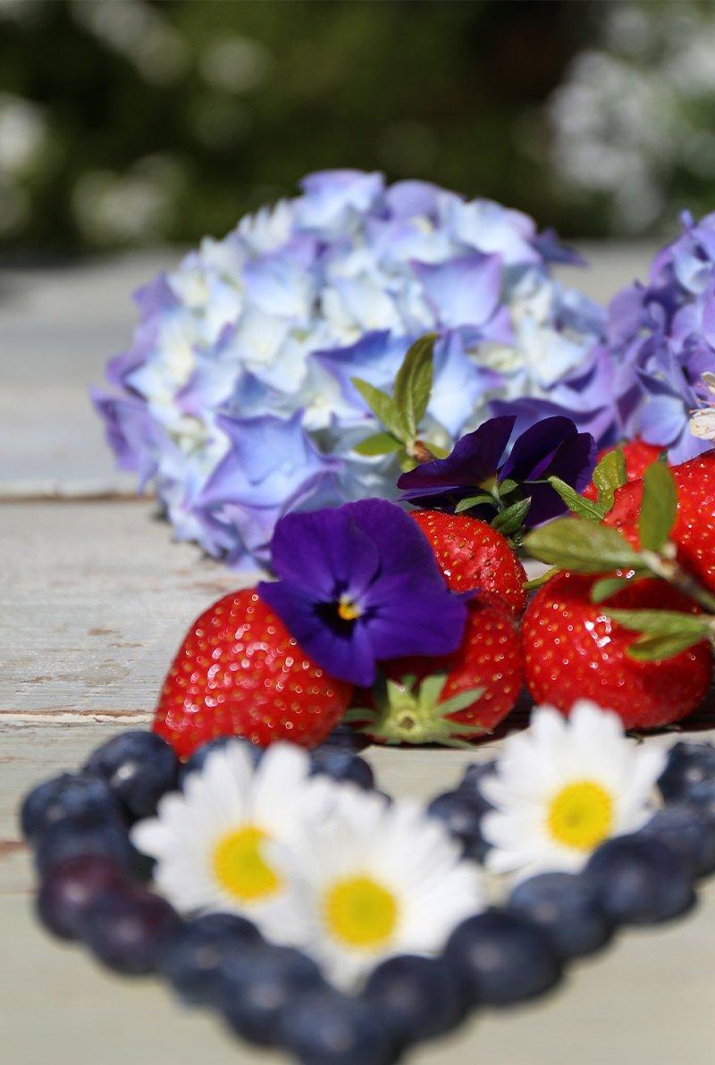 blåbær og jordbær, margeritter og stemor, 17.mai-pynt