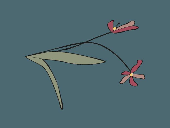 Hageland Hagekartoteket - Klipp av visne blomster