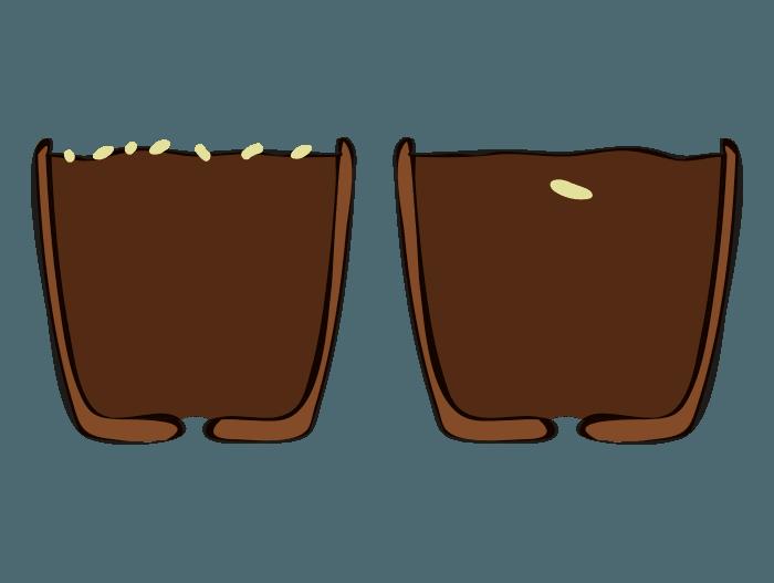 Hageland Hagekartoteket - Størrelsen på frøet avgjør dypden den skal såes i