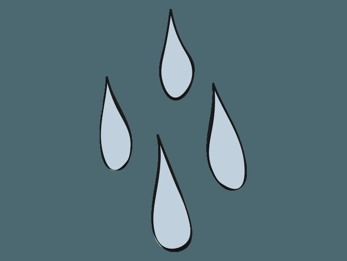 Hageland Hagekartoteket - Grønnsakshage trenger godt med vann