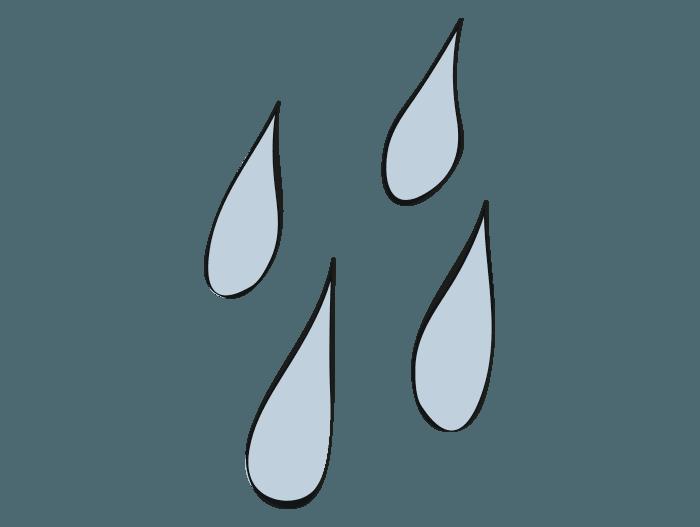Hageland Hagekartoteket - Hageroser i krukker må aldri mangle vann