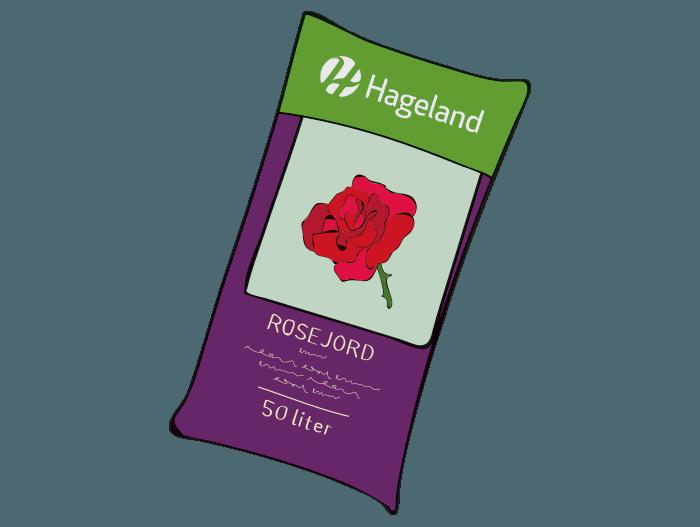 Hageland Hagekartoteket - Pass på at du planter hagerosene i stor nok krukke