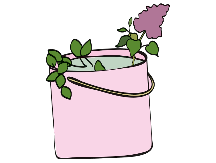 Hageland Hagekartoteket - plantetips for prydbusker og trær