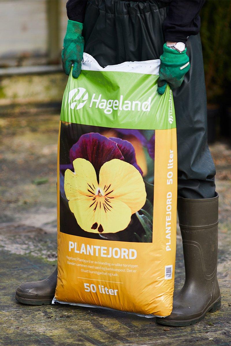 gartner holder stor pose med plantejord i drivhus