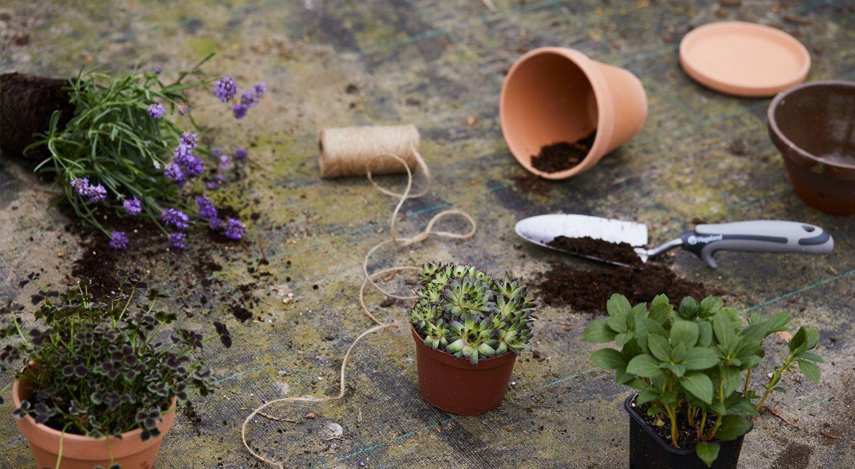 blomster planter potter jord redskap spade jordtyper
