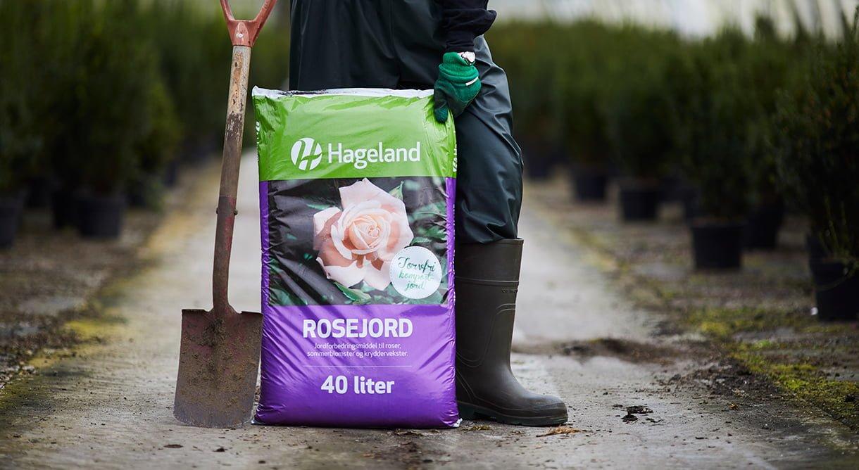 gartner holder stor pose med rosejord i drivhus