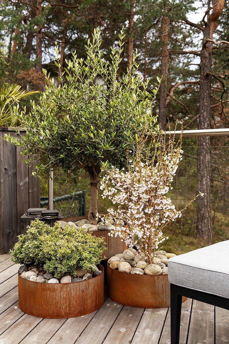 Hjørnet med store blosterpotter og beplantete tre og busker