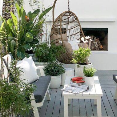 Orbit sofagruppe, hengestol Corsica og hvite krukker med palmer, eukalyptus, bambus, oliven- og sitronplanter