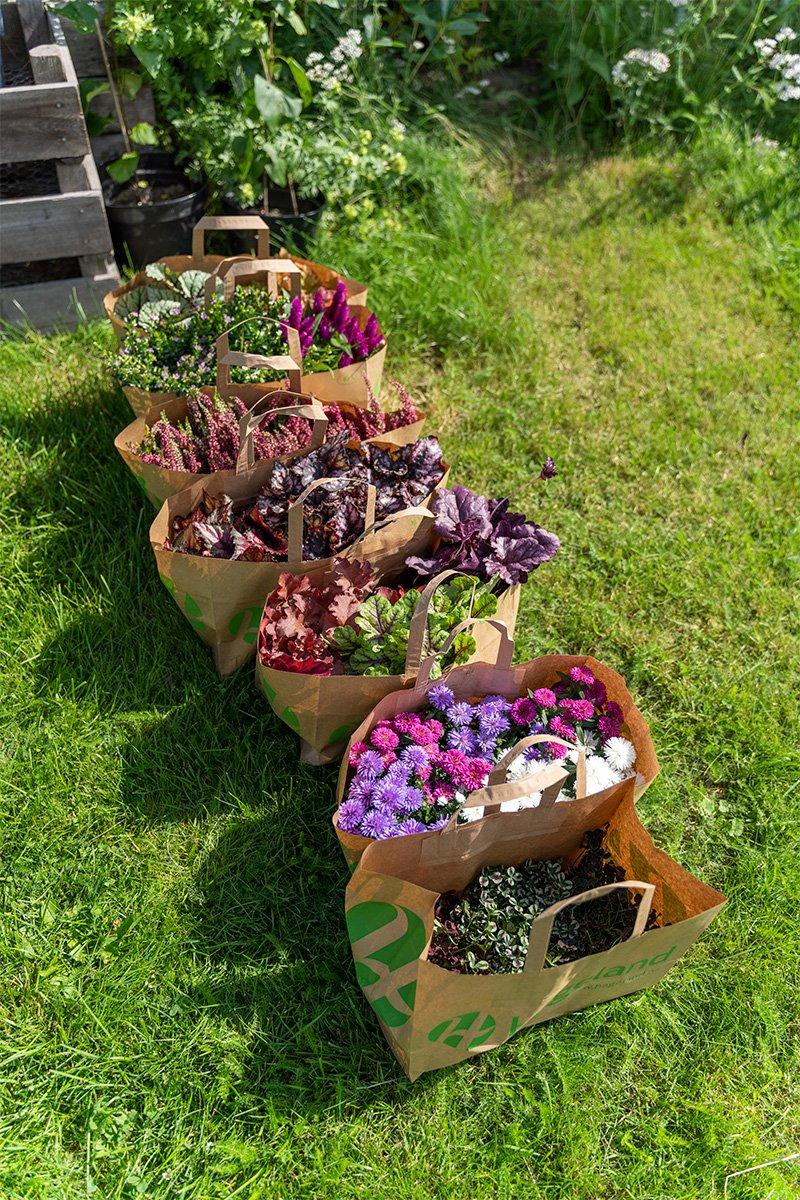 papirposer fra Hageland fyllt med høstplanter til krukkeplanting