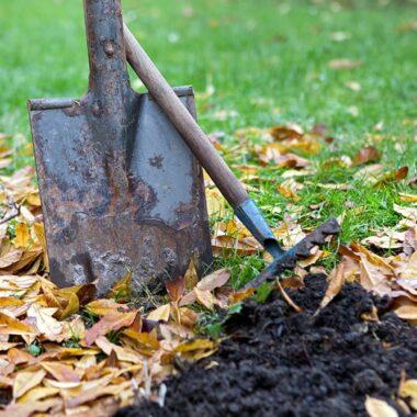 spade i jorda, løv på bakken. Klar for høstplanting.