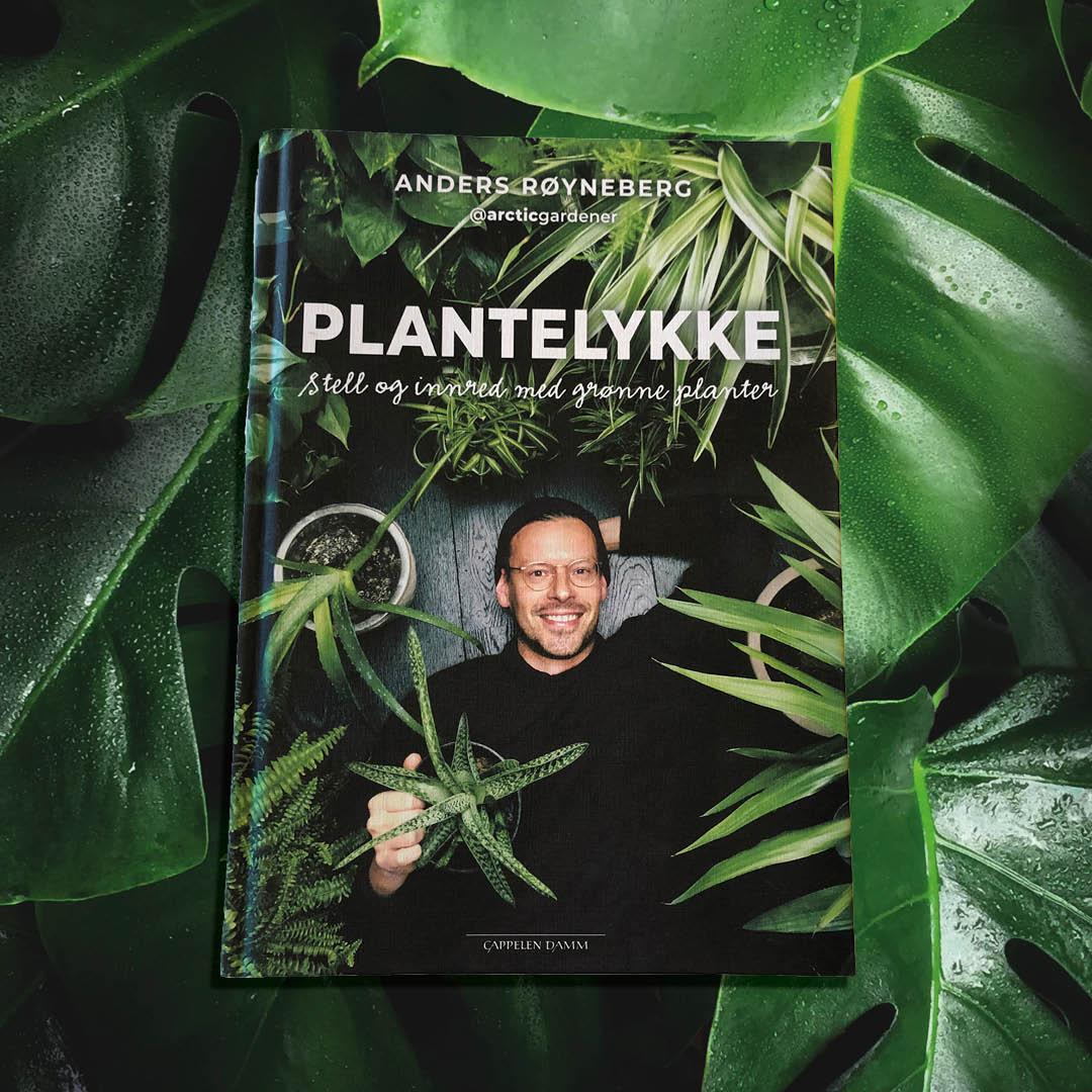 Konkurranse_plantelykke