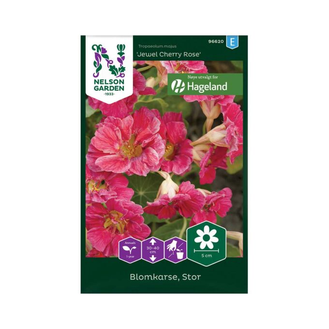 Blomkarse, Stor, Cherry Rose Jewel