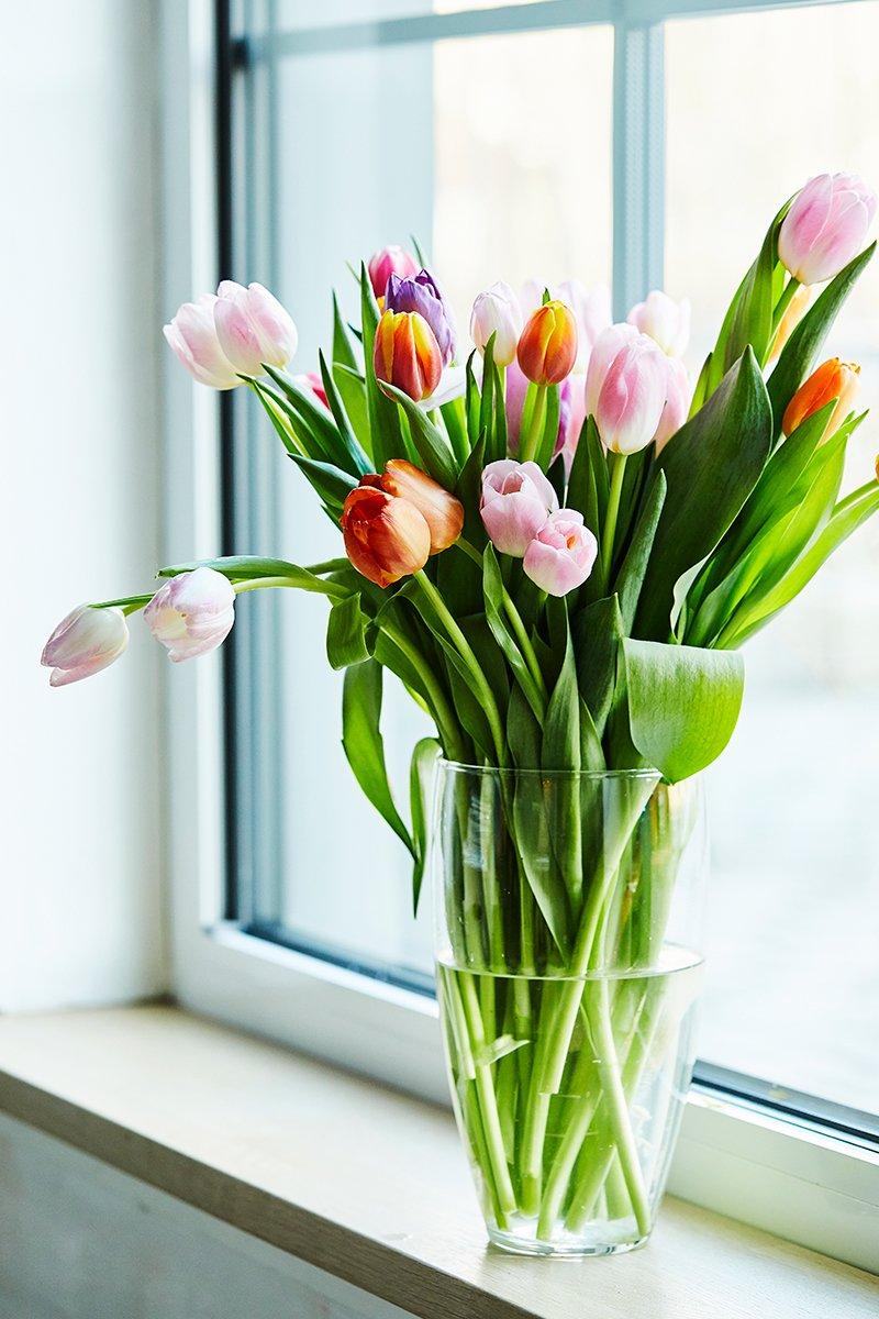 tulipanbukett