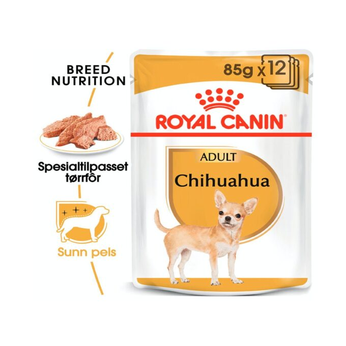 Chihuahua Adult 3Kg