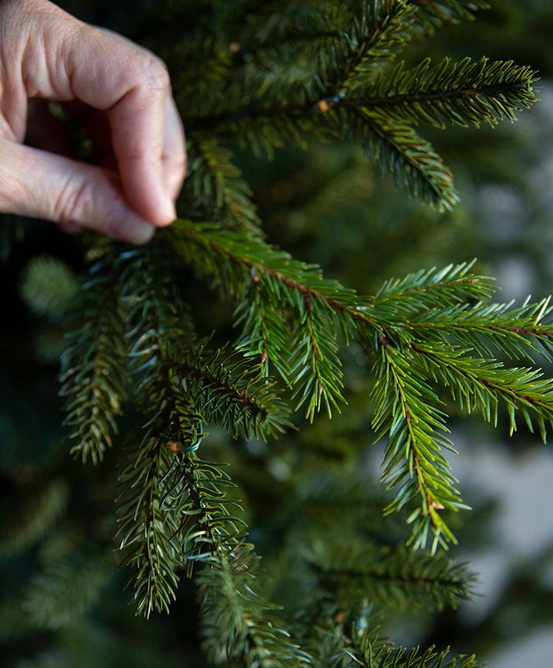 Hånd som kjenner på kvaliteten til kunstig juletre
