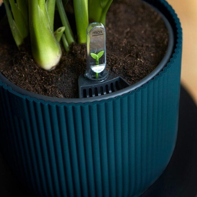 elho vibes potte med selvvanning i plast blå