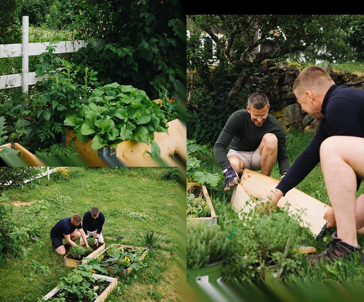 En dag i hagen til articgardener på Hadeland