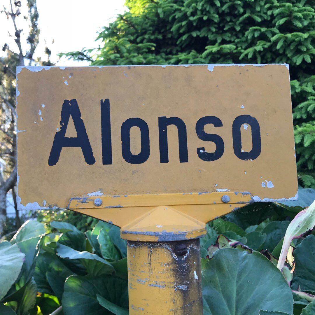Alonsohuset